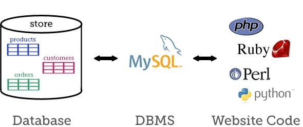 ساختار MySQL