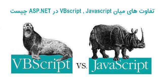 تفاوت های میان VBscript , Javascript در ASP.NET چیست