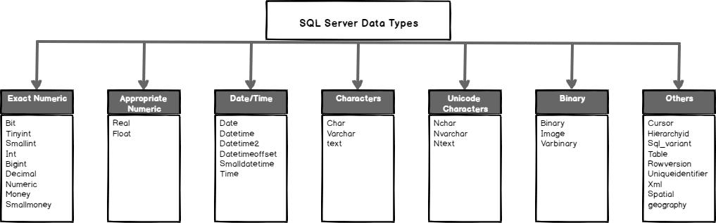 بررسی Data Type در یکپارچگی اطلاعات در SQL server