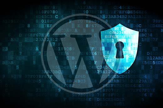 تنظیمات هاست وردپرس و امنیت آن
