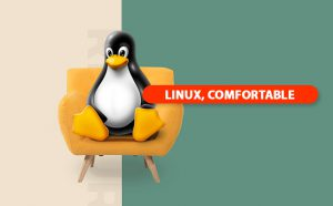 مقایسه هاست ویندوز و هاست لینوکس،