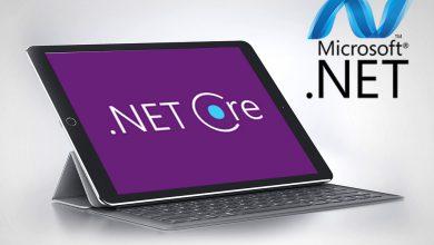 هاست asp.net core