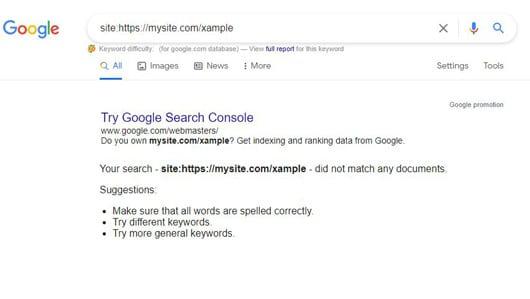 خطا ایندکس نشدن صفحه در گوگل